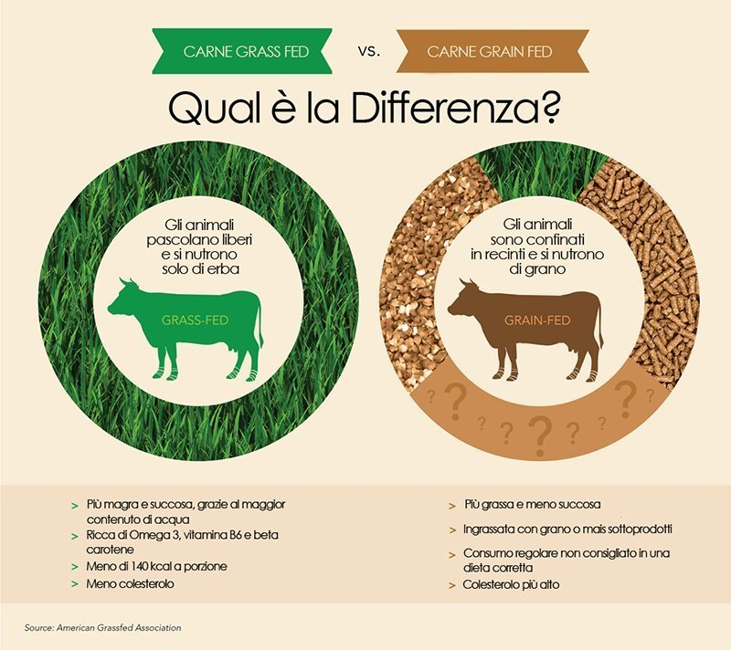 differenze-grass-fed