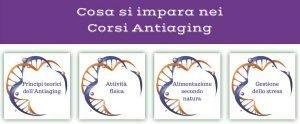 corsi-antiaging-francesco-balducci