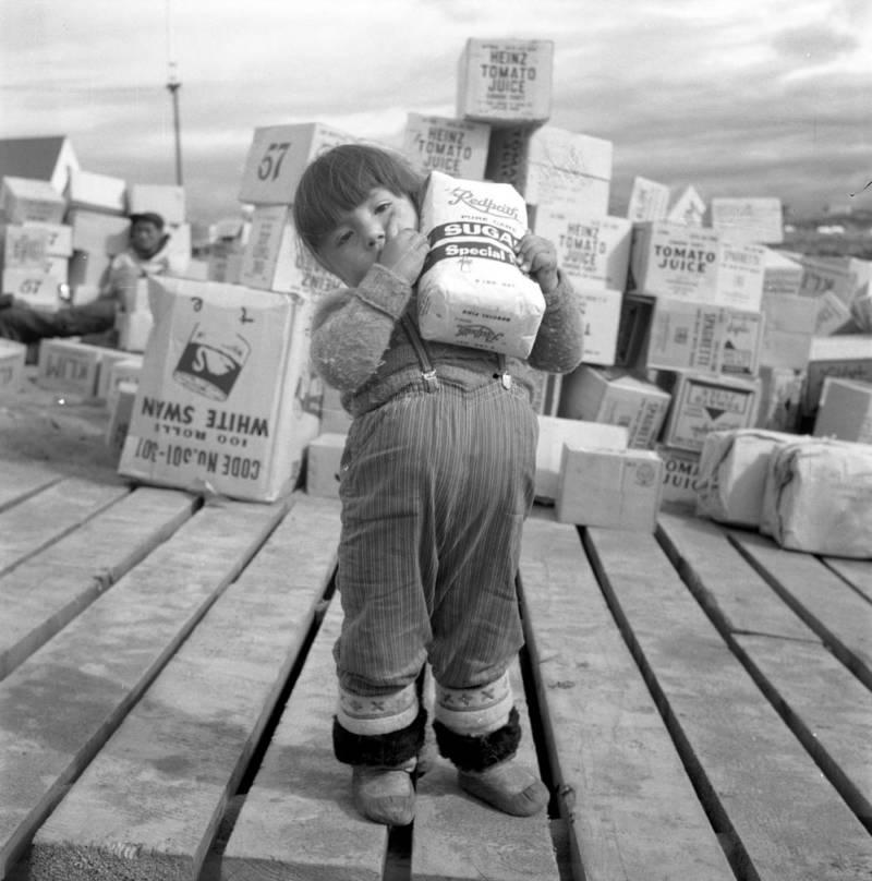 inuit zucchero