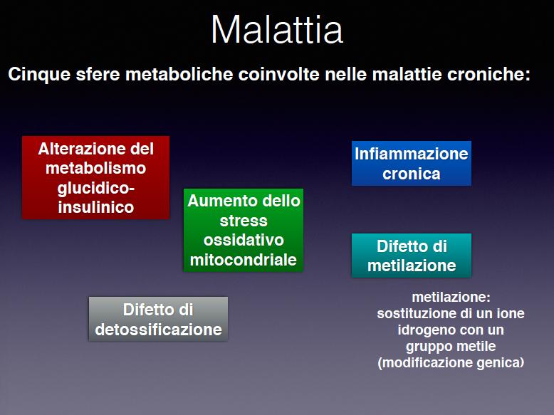 malattie-croniche-sfere-metaboliche