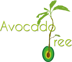 avocado-tree-matteo-cozzi