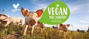 veganuary-2020-italia-try-vegan-this-month