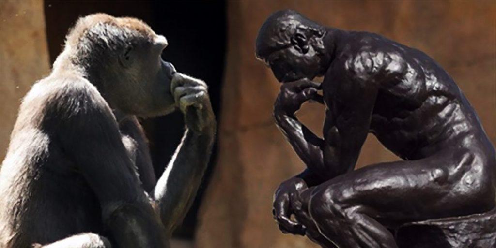 psicologia evolutiva intervista glenn geher
