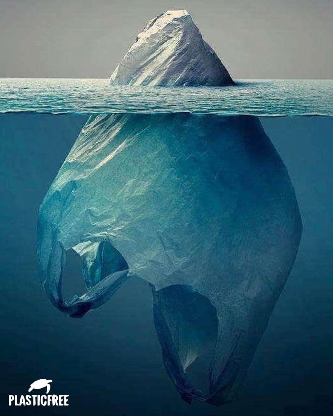sacchetto plastica iceberg mare plastic free
